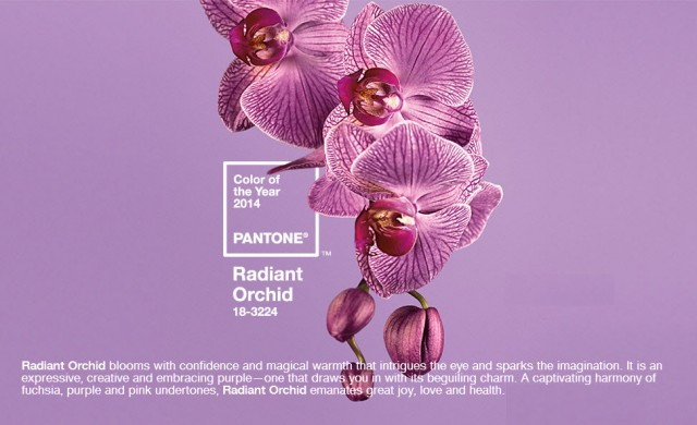 2014 Color of the Year is Radiant Purple