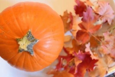 Pumpkin Kheer: Pumpkin Sweet Milk Dessert | Favemom.com