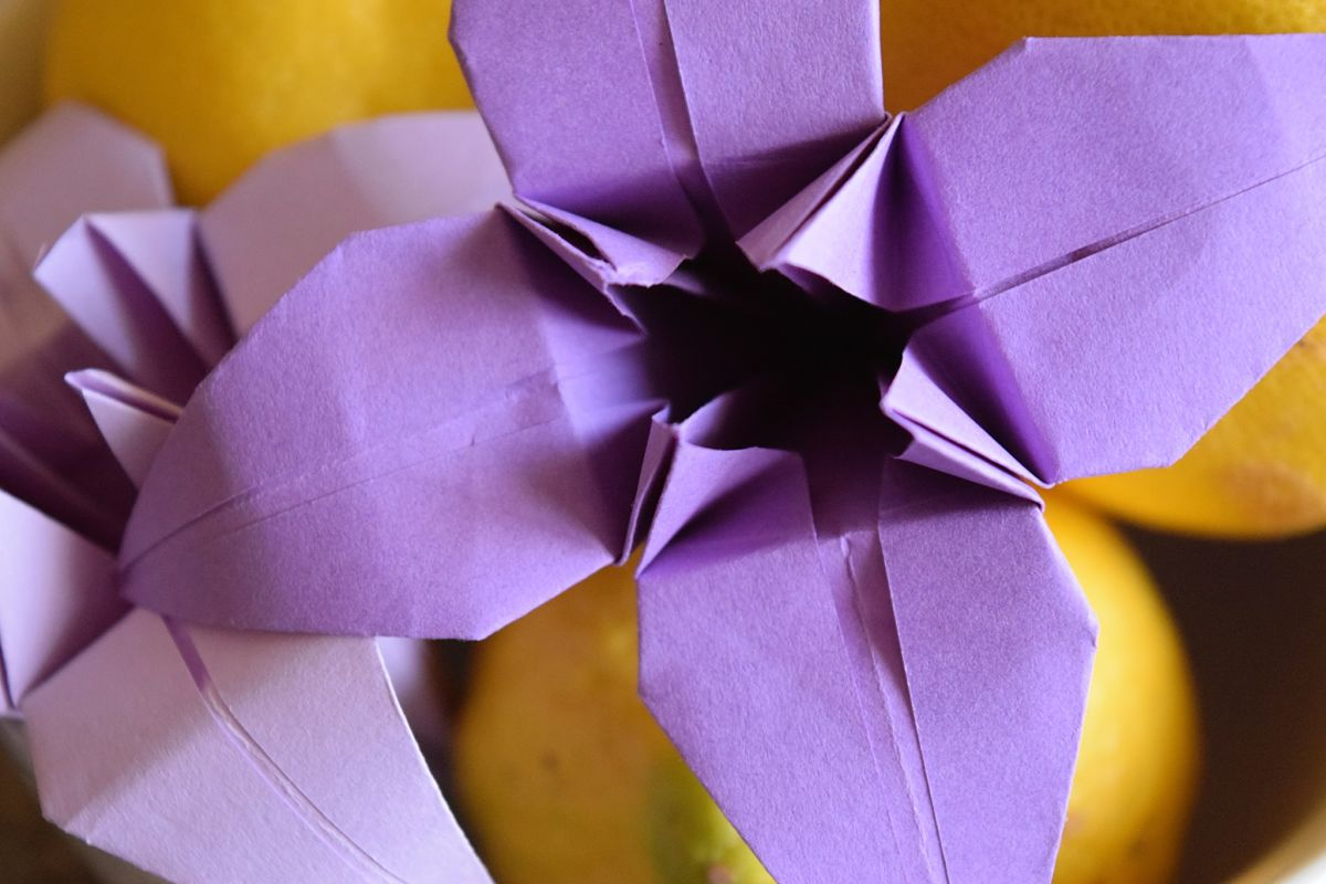 5 reasons fodling an origami lily is better than gardening flower bedsFAvemom.com