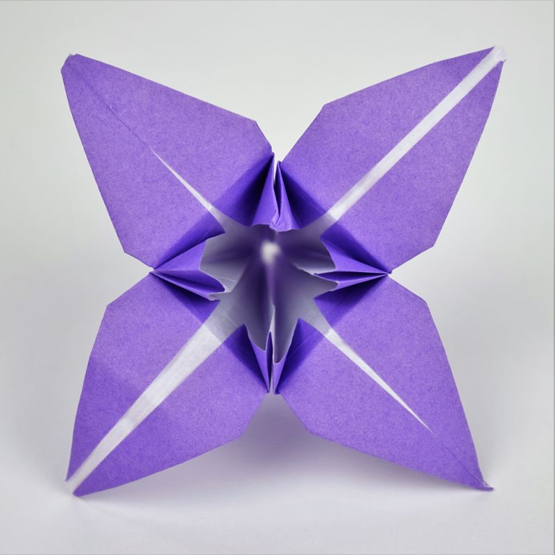purple paper origami lily flower on white background