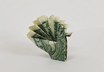 money origami turkey
