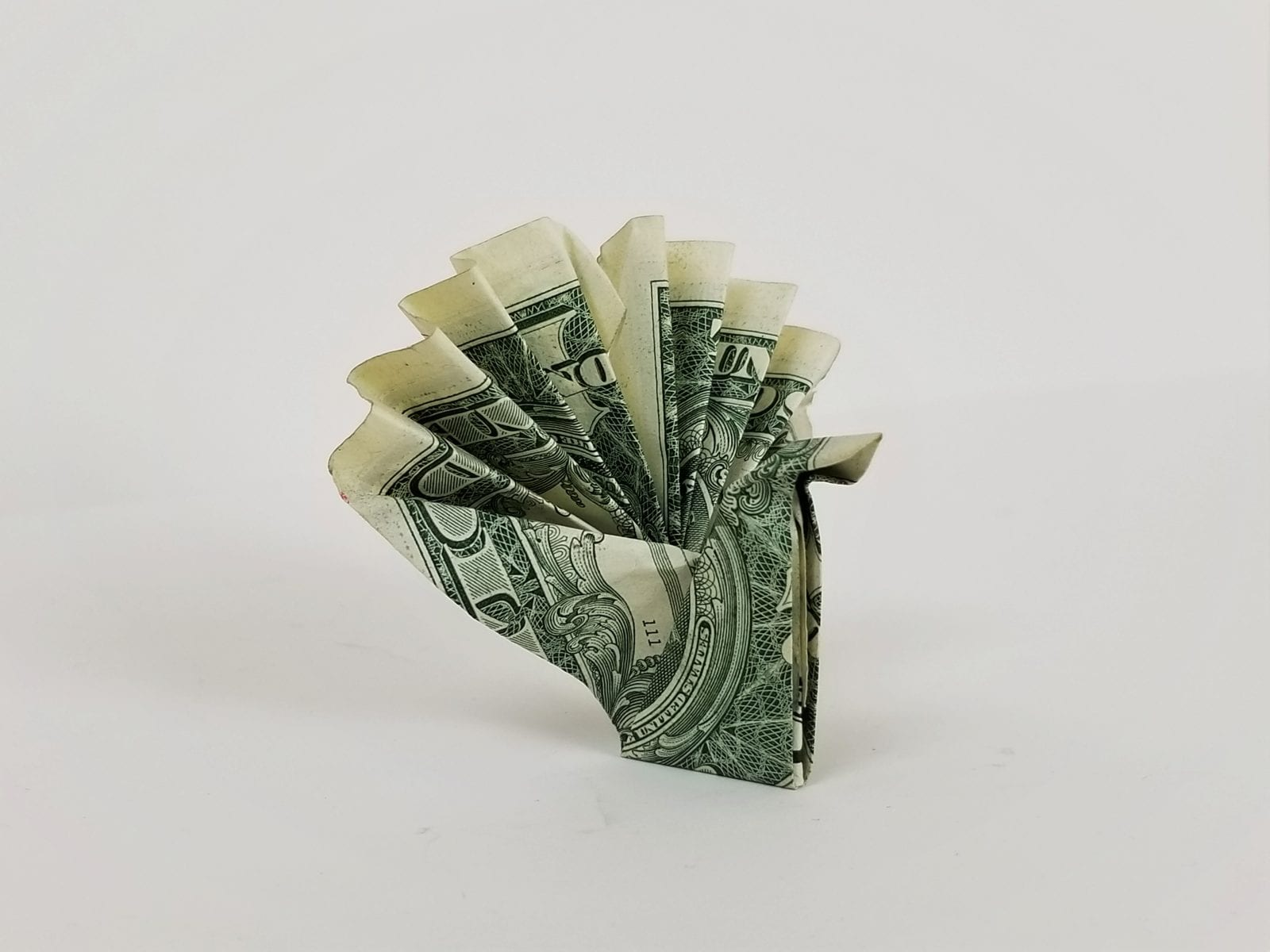 money origami turkey